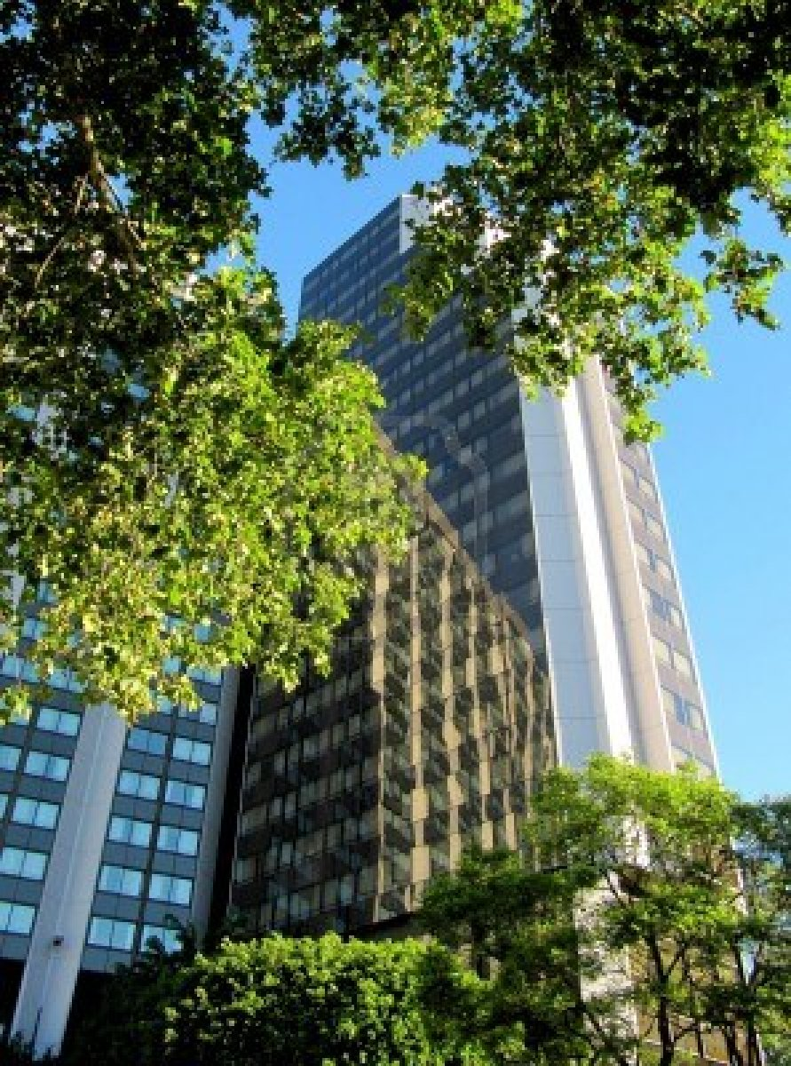 14781054-high-rise-buildings-in-the-big-city-among-trees