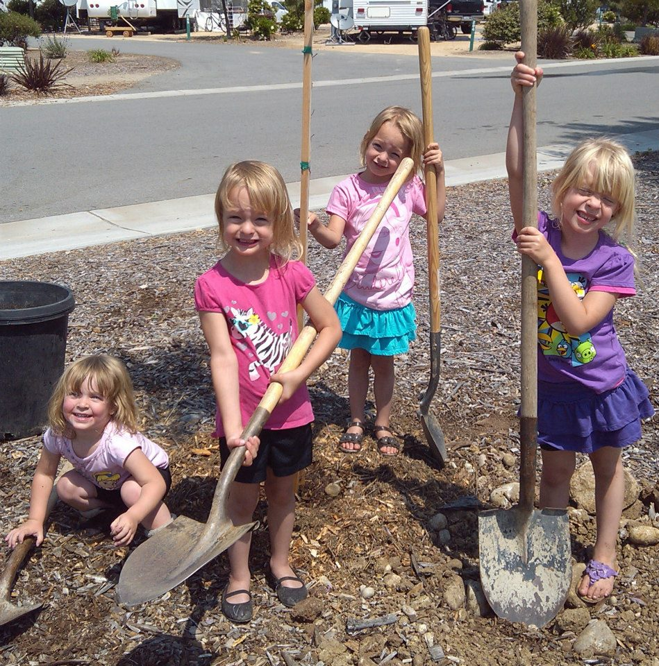 Drumroll Please! Our Community Tree Planting Partners Are…